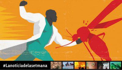 Dia mundial contra la malària
