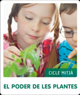 Fem-ho per projectes (CM). El poder de les plantes