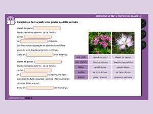 Activitat lectoclic lila