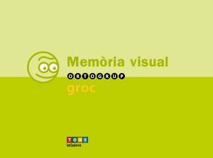 Làmines de memòria visual